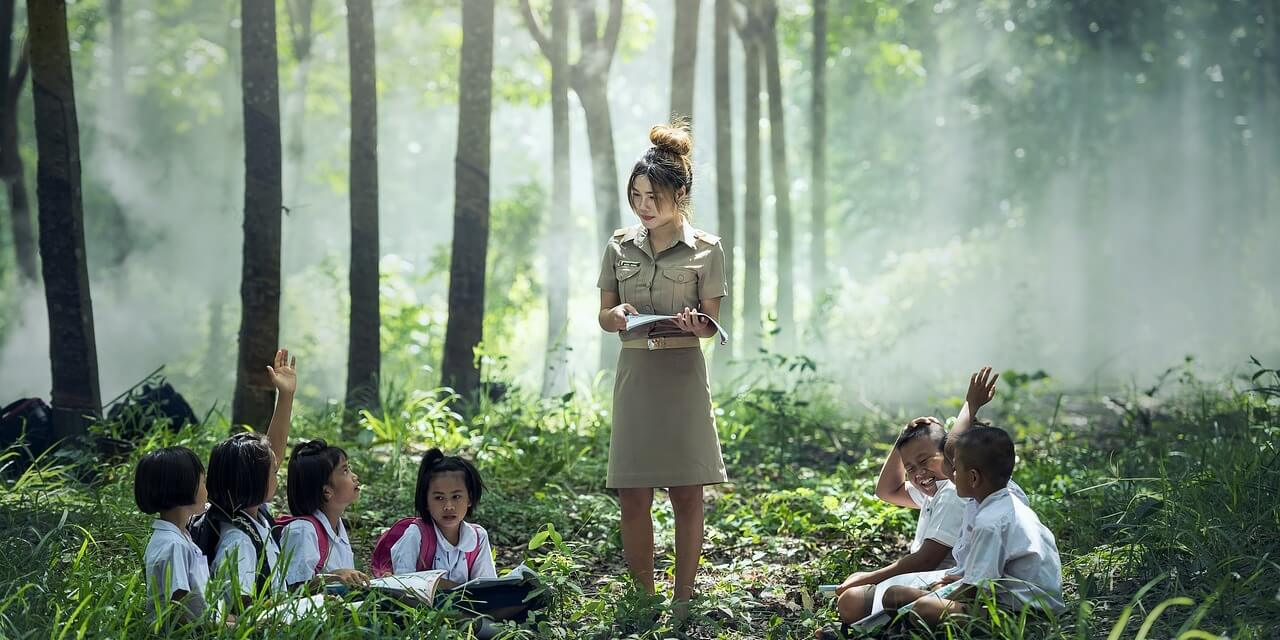 Class in the forest